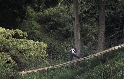 Costa Rica, ¿pura vida?