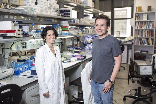 Raúl Méndez y Eulàlia Belloc en un laboratorio del IRB Barcelona