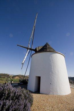 Molino de viento en El Almendro.
