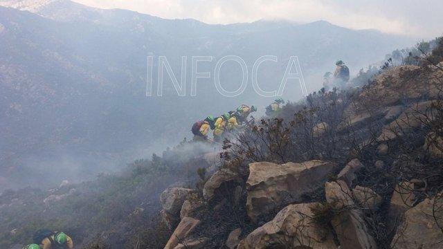 Imagen del incendio forestal de Tarifa