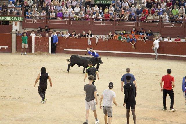 Suelta de reses en la plaza de toros La Cubierta