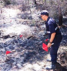 Uno de los efectivos del Grupo de Investigación de Incendios