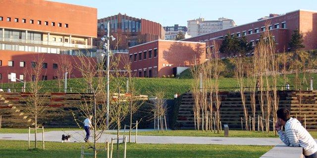 Campus de la UC visto desde Las Llamas