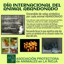 DÍA INTERNACIONAL DEL ANIMAL ABANDONADO