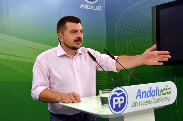 El vicesecretario de Organización del PP andaluz, Toni Martín