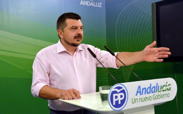PP-A dice que Pedro Sánchez hace 'mucho daño' a Andalucía en inmigración mientras 'Díaz mantiene un silencio cómplice'