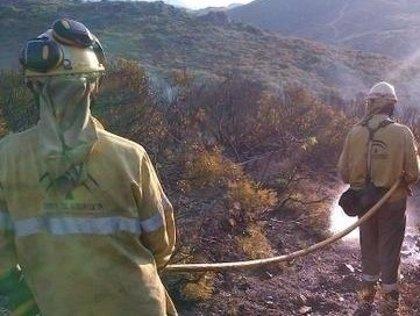 Efectivos del Infoca trabajan en la extinción de un incendio forestal declarado en Cardeña (Córdoba) por un rayo