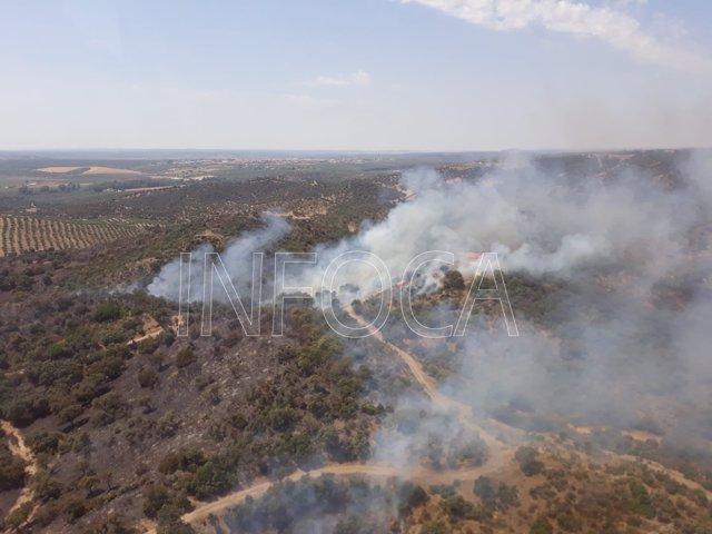 Incendio forestal en el paraje Alto del Rincón, de Marmolejo.