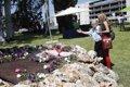VICTIMAS DE SPANAIR NO CONFIAN EN QUE LA COMISION EN EL CONGRESO VAYA A ESCLARECER RESPONSABILIDADES DEL SUCESO