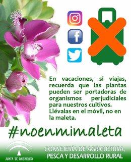 Campaña concienciación de la Junta sobre el transporte de plantas