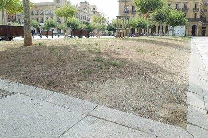 """El PSN critica la """"apreciable decadencia"""" de las zonas verdes de Pamplona y critica """"el desinterés"""" de Asiron"""
