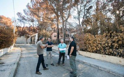 Gandia crea grupos de trabajo de vivienda, medio ambiente, servicios básicos y limpieza en la zona afectada por el fuego