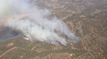 Extinguido el incendio forestal declarado en El Ronquillo (Sevilla)