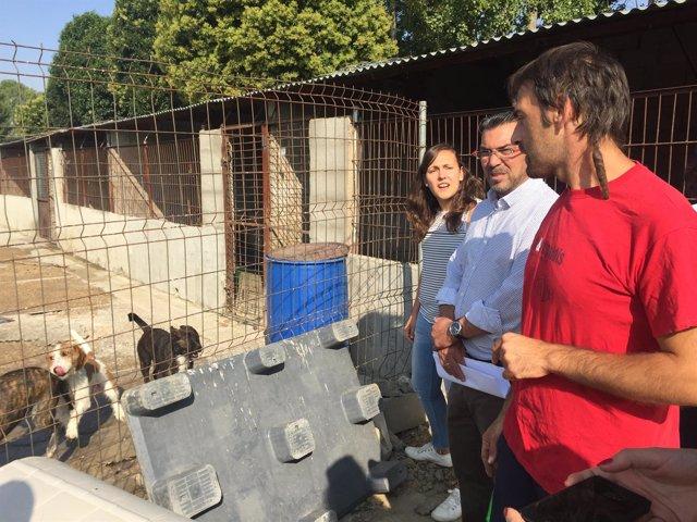 Protectora de Animales de León  20-8-2017