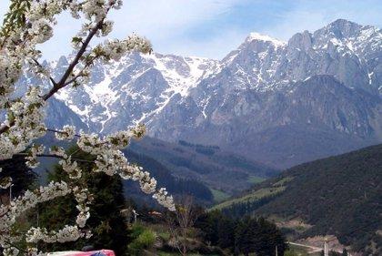 Un hombre resulta herido grave tras despeñarse en los Picos de Europa