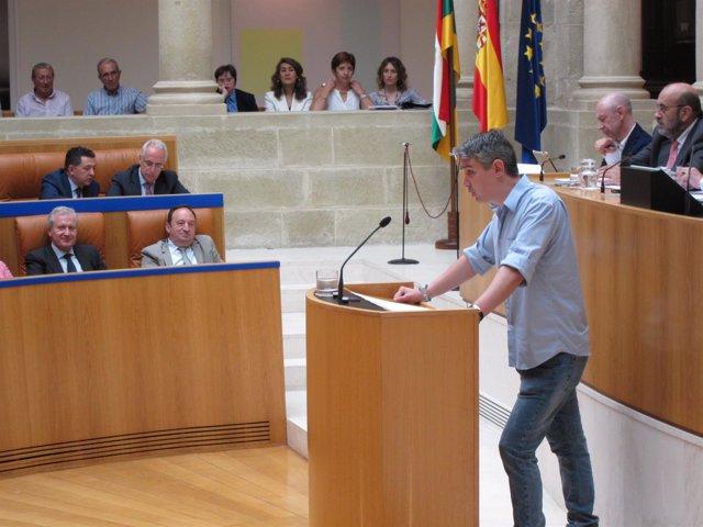 Portavoz del Grupo Parlamentario de Podemos Germán Cantabrana en pleno