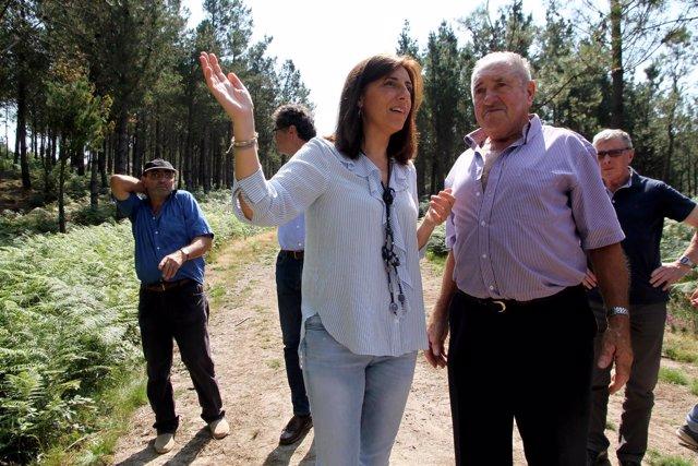 Ángeles Vázquez visita la asociación Amicos