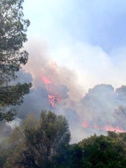 Incendio forestal en Cala Magraner