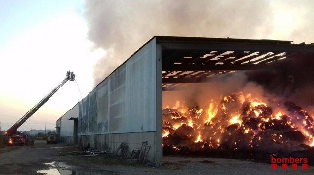 El almacén de alfalfa mide 50 metros de largo por 35 de ancho
