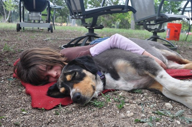 Niña durmiendo la siesta con un perro.