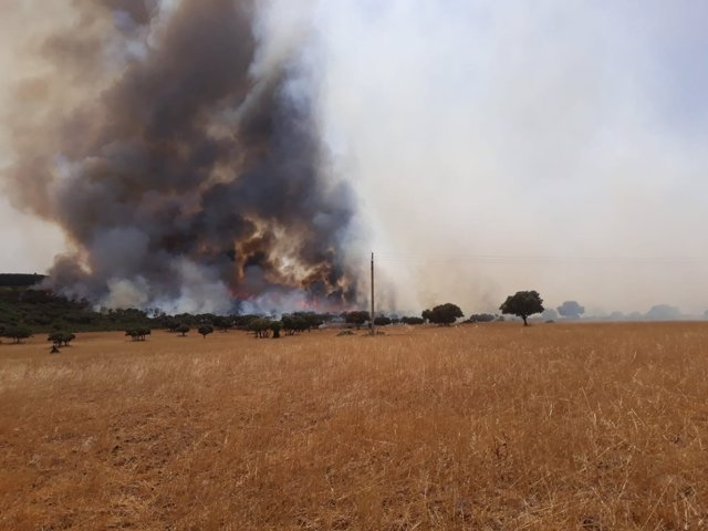Incendio en Almuradiel