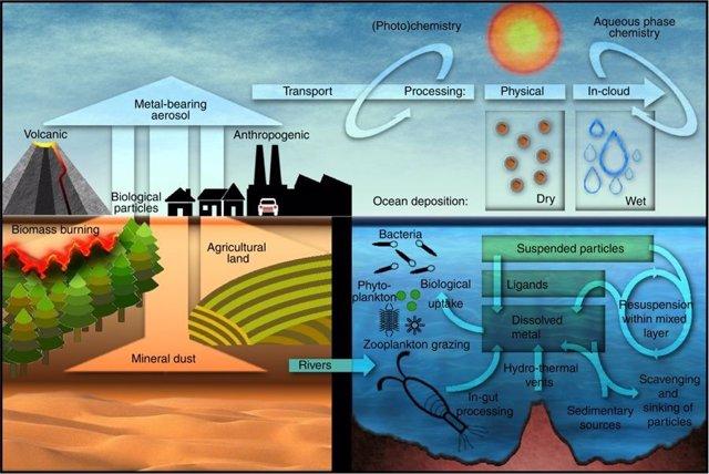 Esquema de la disolución de metal en aerosol e impactos en el océano