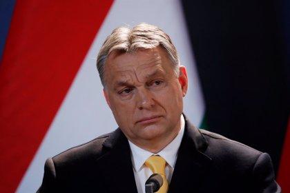 El TEDH ordena a Hungría alimentar a los solicitantes de asilo detenidos en la frontera con Serbia