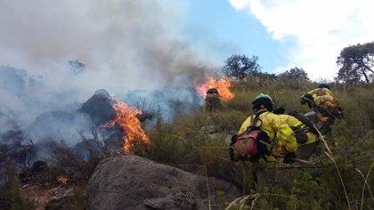Controlado el incendio forestal en Colomera (Granada), de donde se retiran los medios áreos