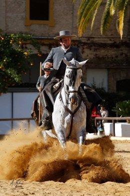 Espectáculo ecuestre 'Pasión y Duende del Caballo Andaluz'