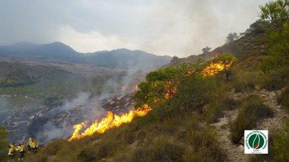 Efectivos del Plan Infomur controlan un incendio forestal en la Sierra del Buitre, en Lorca