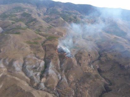 Un total de 30 bomberos del Infoca trabajan en el incendio forestal declarado en Tabernas (Almería)