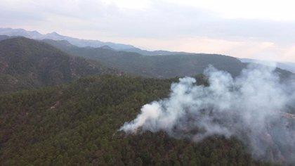 Declarado un incendio forestal en Hornos (Jaén)