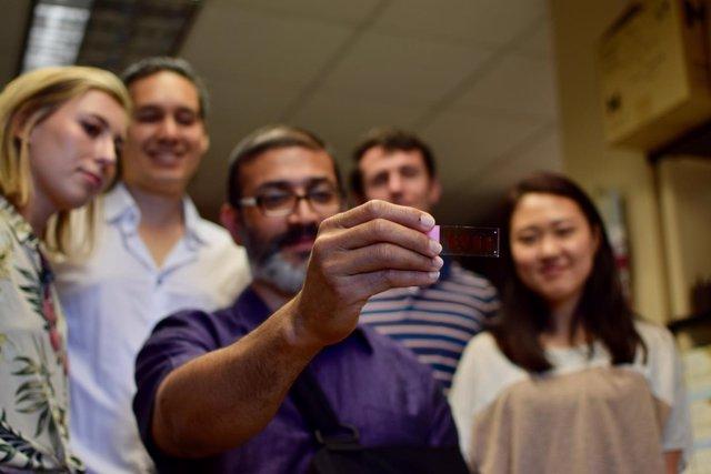 El Investigador Lohitash Karumbaiah (Centro) Y Miembros De Su Laboratorio.
