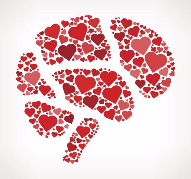 Cerebro, corazón, amor