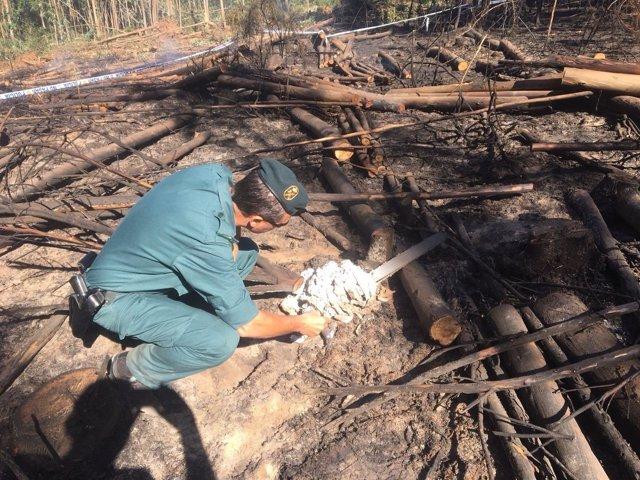 Guardia Civil inspecciona la motosierra que explotó en Sanxenxo