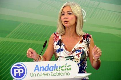 PP-A pide una posición conjunta en inmigración para el primer Pleno de septiembre