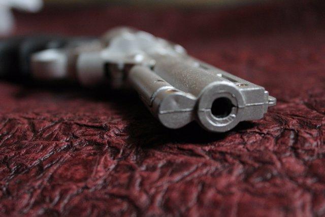 Arma de fuego , pistola