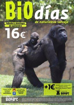 Biodias en Bioparc Valencia