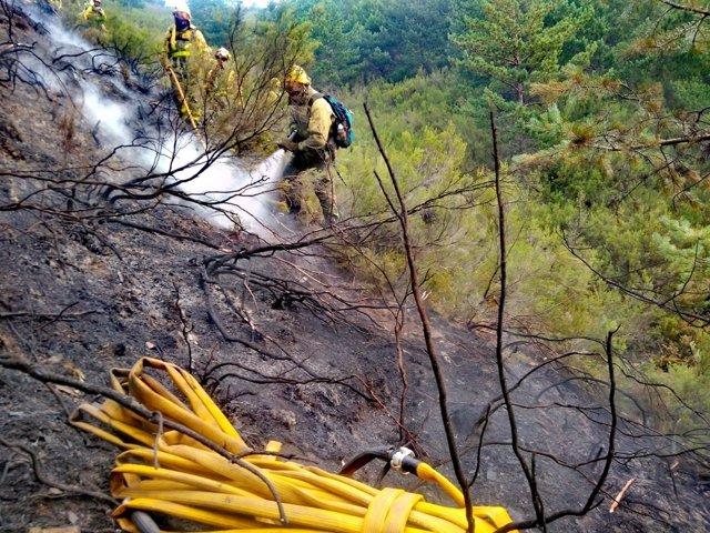 Bosque quemado en O Invernadoiro
