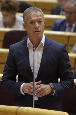 Ander Gil, portavoz del PSOE en el Senado
