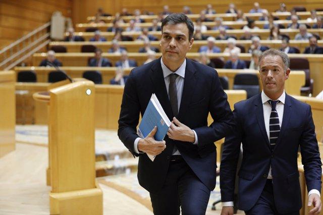 Pedro Sánchez en su primera sesión de control al Gobierno en el Senado