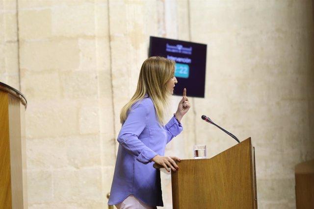 La parlamentaria y portavoz de Hacienda de Podemos Andalucía, Carmen Lizárraga