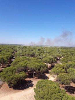 Incendio declarado en el paraje Vallesalado de Cartaya.