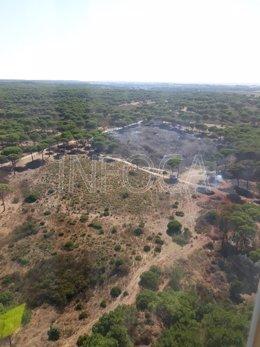 Controlado el incendio forestal en el  paraje Vallesalado de Cartaya.