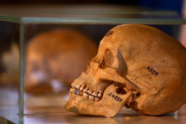 Restos mortales de las víctimas del genocidio de Namibia