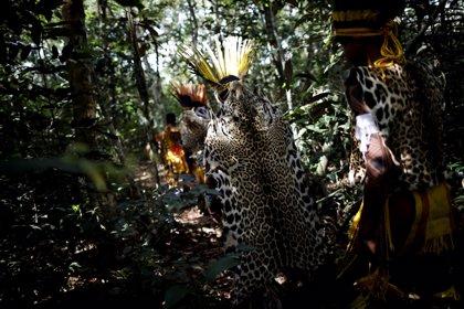 La 'Biopiratería', el saqueo de los recursos de los pueblos indígenas