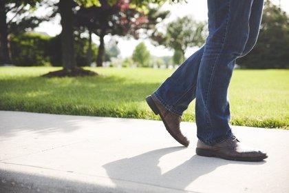 La hiperactividad de la corteza motora del cerebro es responsable del síndrome de piernas inquietas