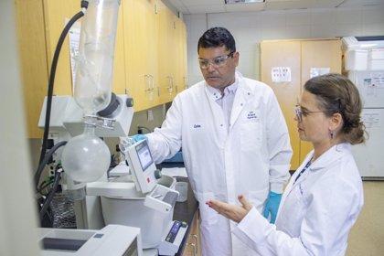 Desarrollan un tratamiento alternativo para la enfermedad arterial periférica