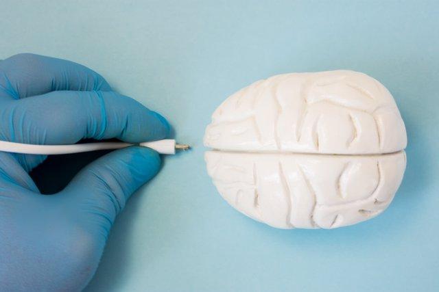 Conectar el cerebro