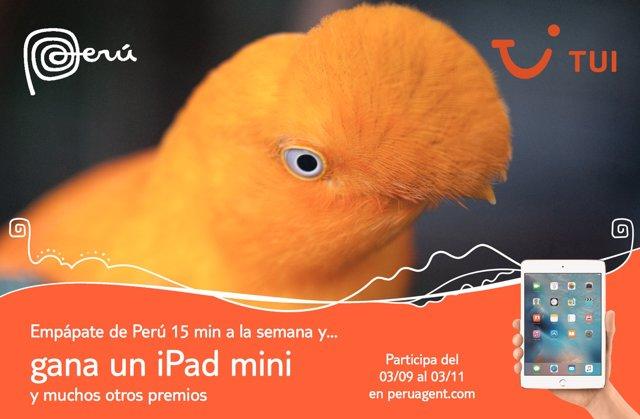 Cartel promocional del curso 'Peruagent'
